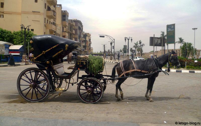 Транспорт в Луксоре
