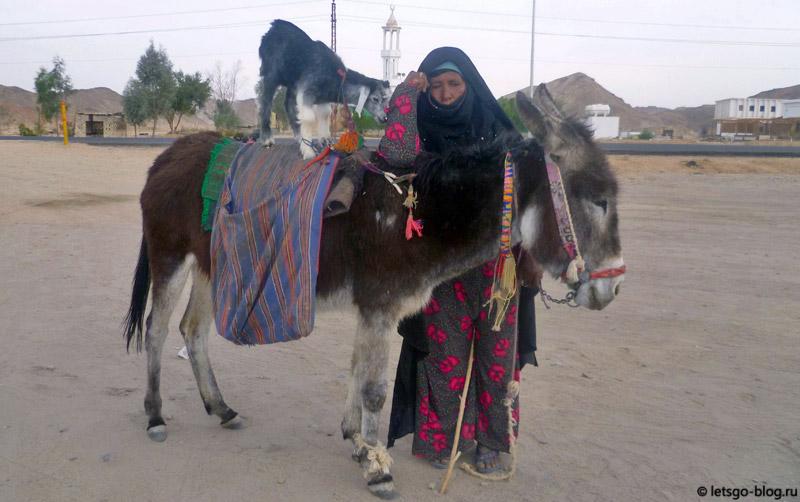 Поездка в Луксор. Женщина с осликом