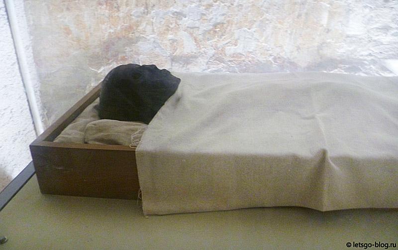 Мумия Тутанхамона. Долина Царей
