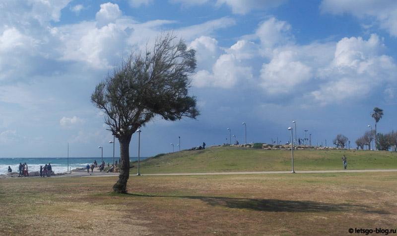 Тель-Авив, пляж Чарльз Клор (Charles Chlore)