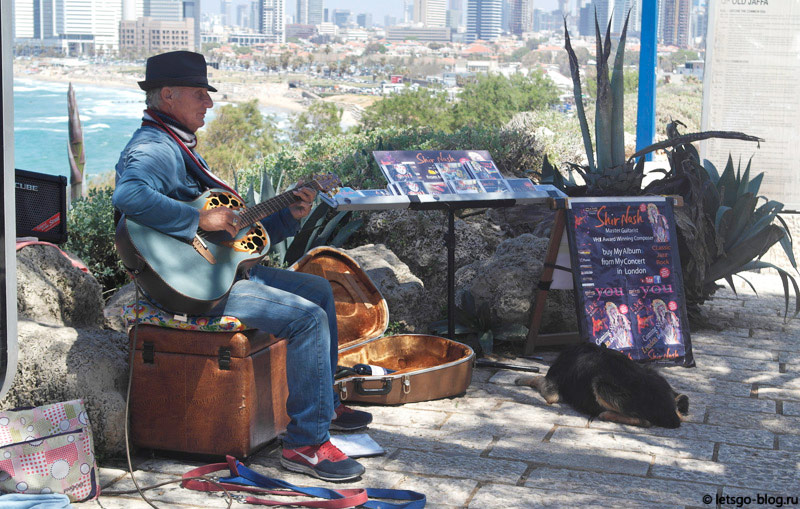 Старый Яффо, уличный музыкант