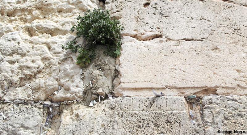 Иерусалим, записки в Стене Плача