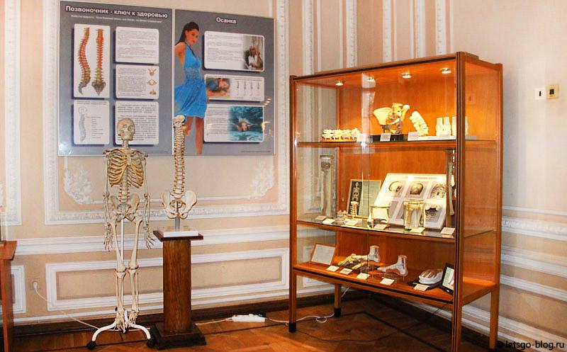 Музей Гигиены спб