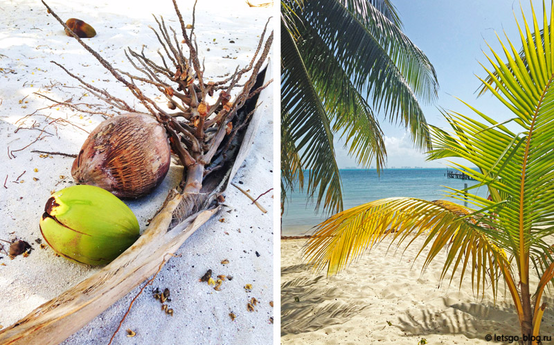 Пляж Тибурон Исла Мухерес