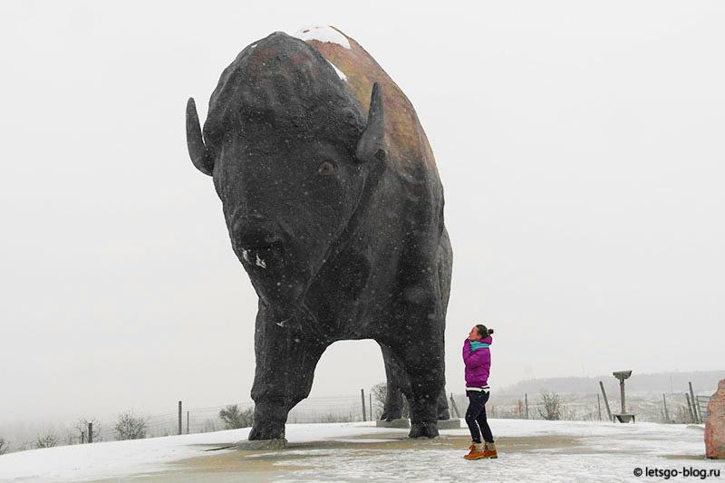 Северная Дакота самый большой памятник бизону