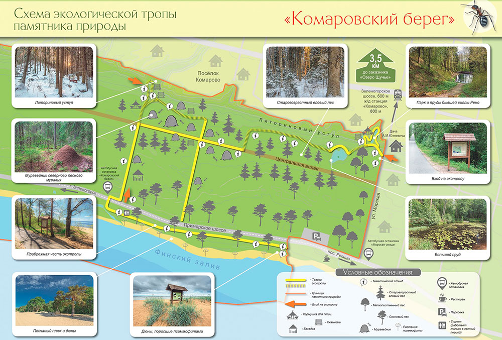Экотропа Комаровский берег схема маршрута