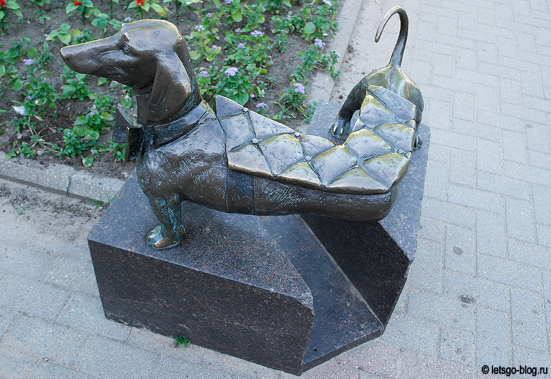 Памятник таксе Зеленогорск